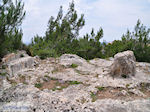 Homerus stone Daskalopetra - Eiland Chios
