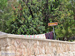 Panoramafoto Chios stad foto 2 - Eiland Chios