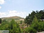 Ergens tussen Chios stad en Volissos - Eiland Chios