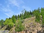 Aan de westkust - Eiland Chios